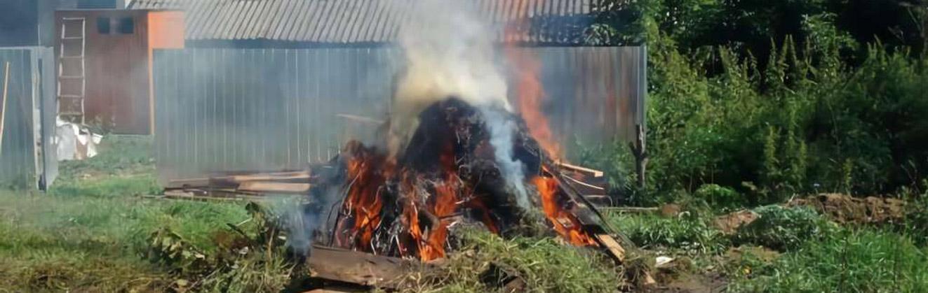 В России с 2021 года на территории частных домов запретят сжигать мусор и разводить костры